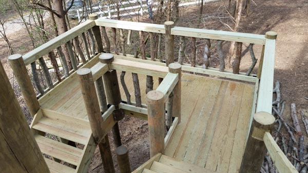 Dale Jr Treehouse Stairs