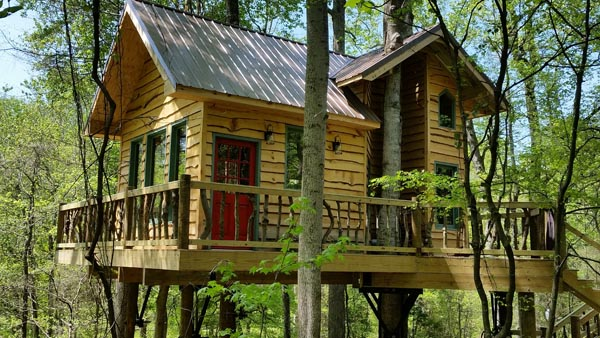 Dale Jr Treehouse Front